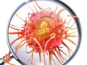 Vitamina B17 não trata câncer (nem é vitamina de verdade)
