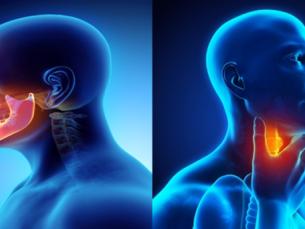 Câncer de cabeça e pescoço atinge 43 mil pessoas por ano